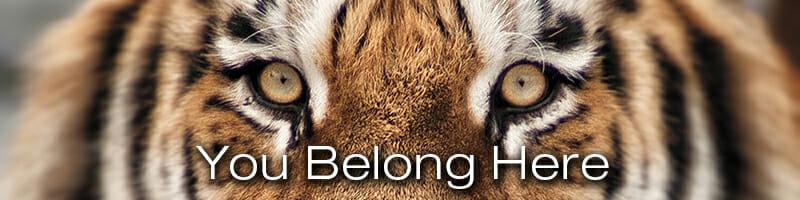 Detroit Zoo - Membership - You Belong Here.